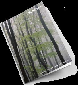 bullerjan-2-brochure-kamin-schlenkrich