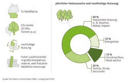 Ofenbau-Schlenkrich-Nachhaltige-Nutzung-Umwelt